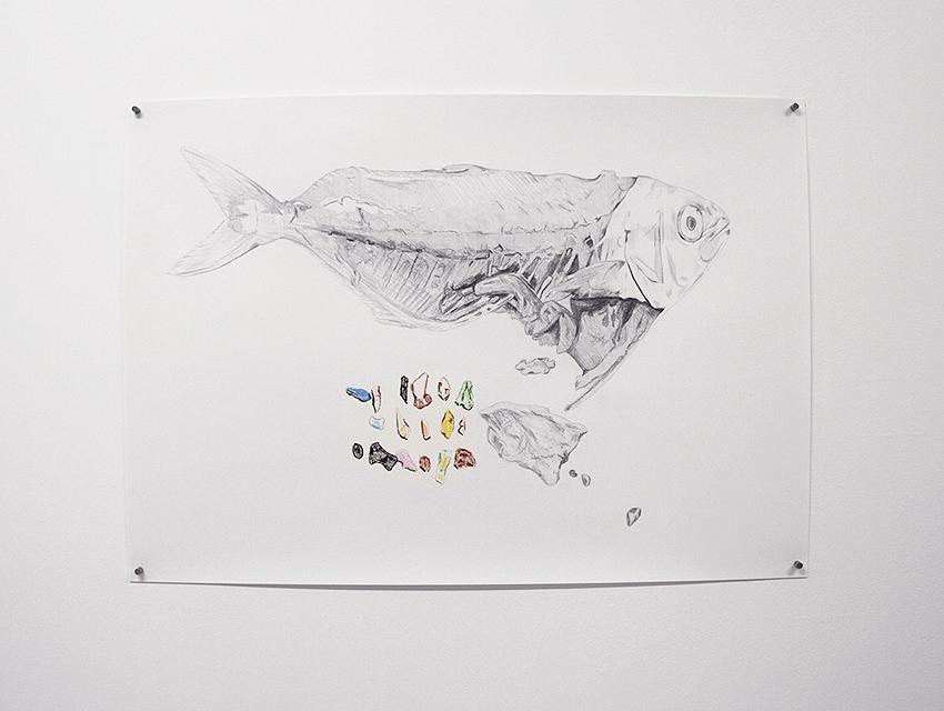 Plastfisk5aa